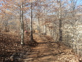 Buffalo Creek Preserve Trail