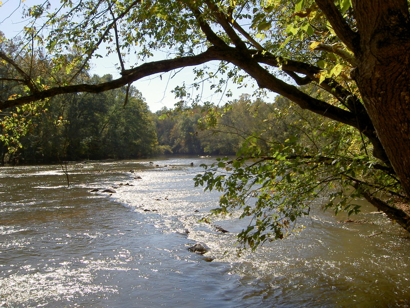 South fork river blueway for Catawba river fishing